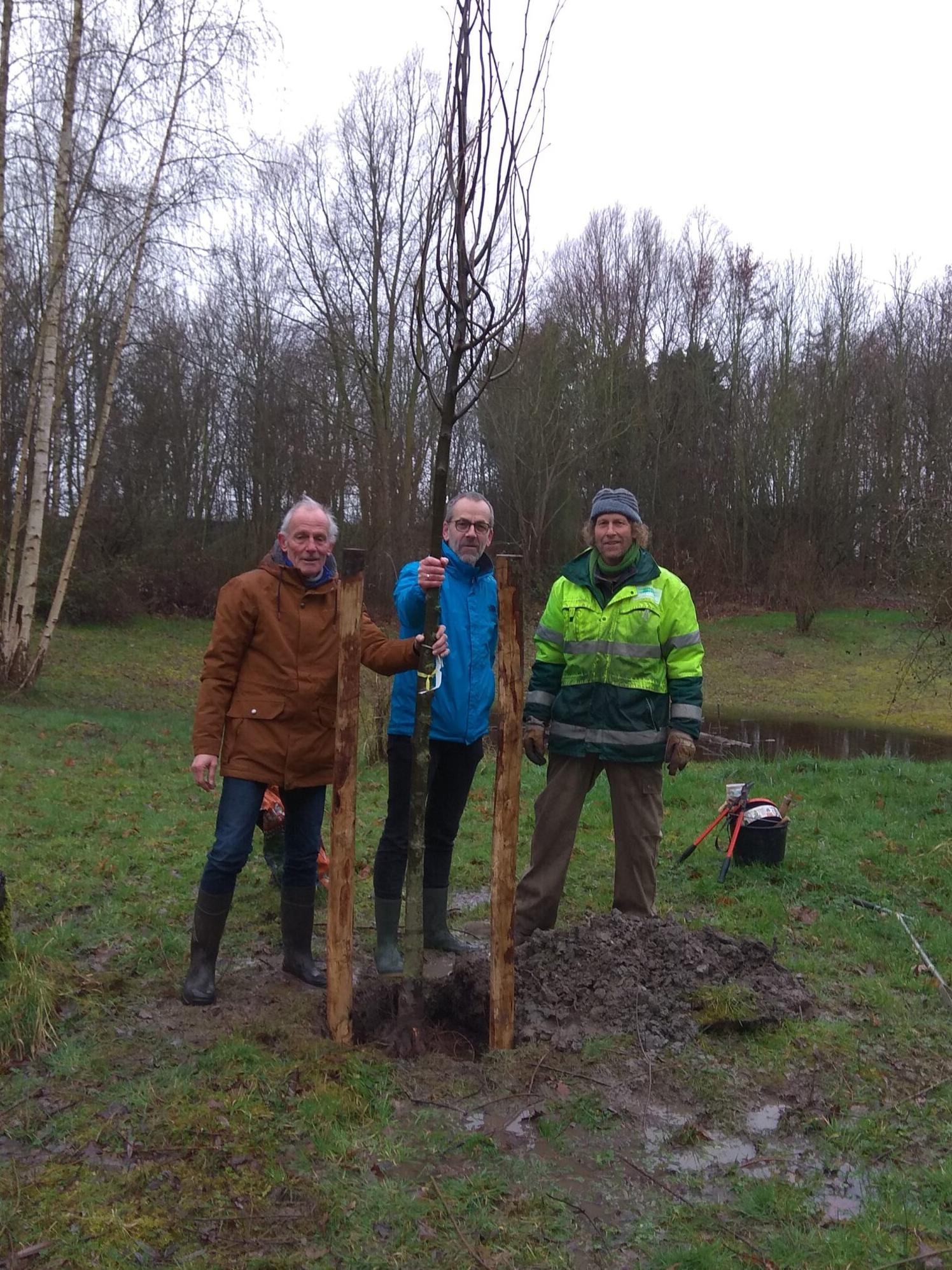 Krijn Jan Provoost plant een boom
