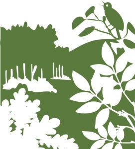 Afbeelding bossen Zeeuwse Natuurambitie