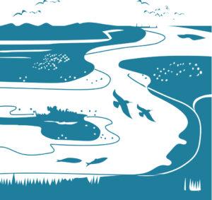Afbeelding Deltawateren Zeeuwse Natuurambitie