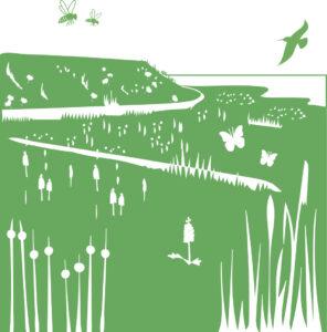 Afbeelding graslanden Zeeuwse Natuurambitie