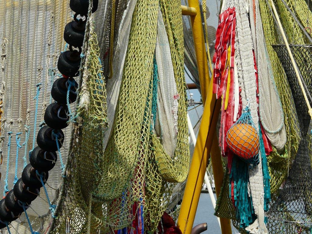 Nederlandse visserij wordt steeds duurzamer
