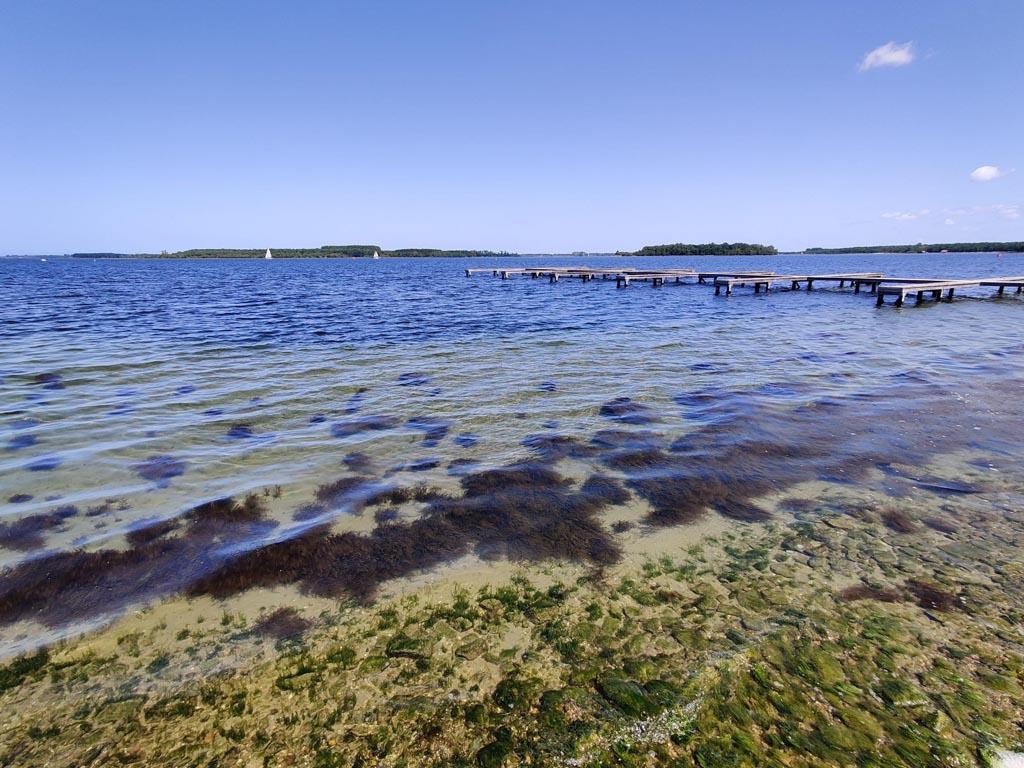 Zeeuwse Omgevingsvisie moet duidelijkere keuzes maken voor klimaat en natuur