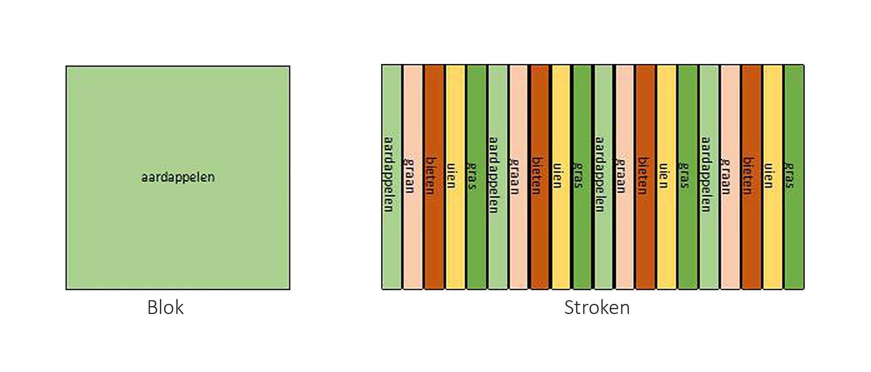 Blok en stroken illustratie Strokenteelt hoog res