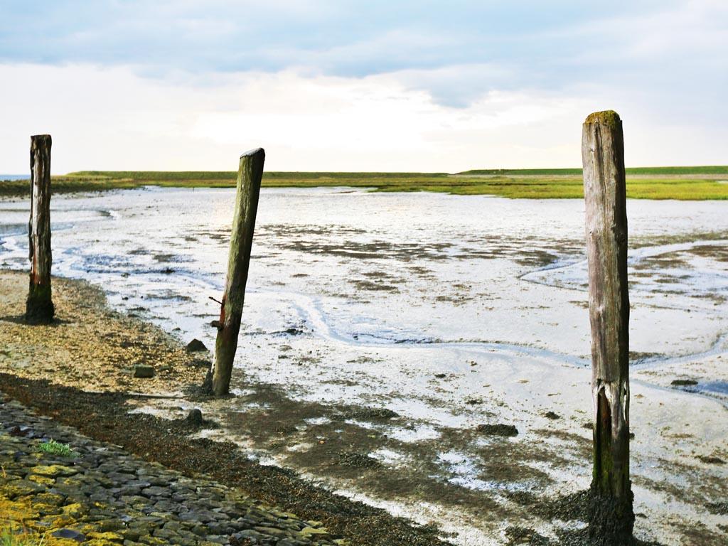 Terugkijken op Smart Sediment kennisdag Zuidwestelijke Delta