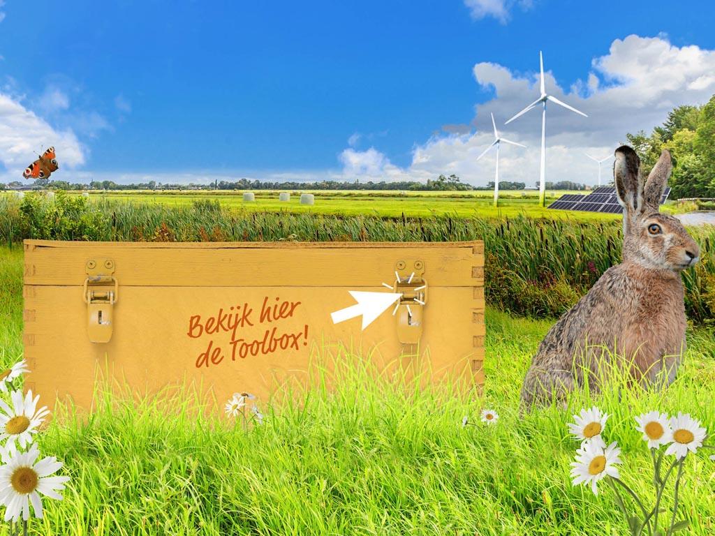 Bekijk hier onze toolbox Natuurinclusieve Energietransitie