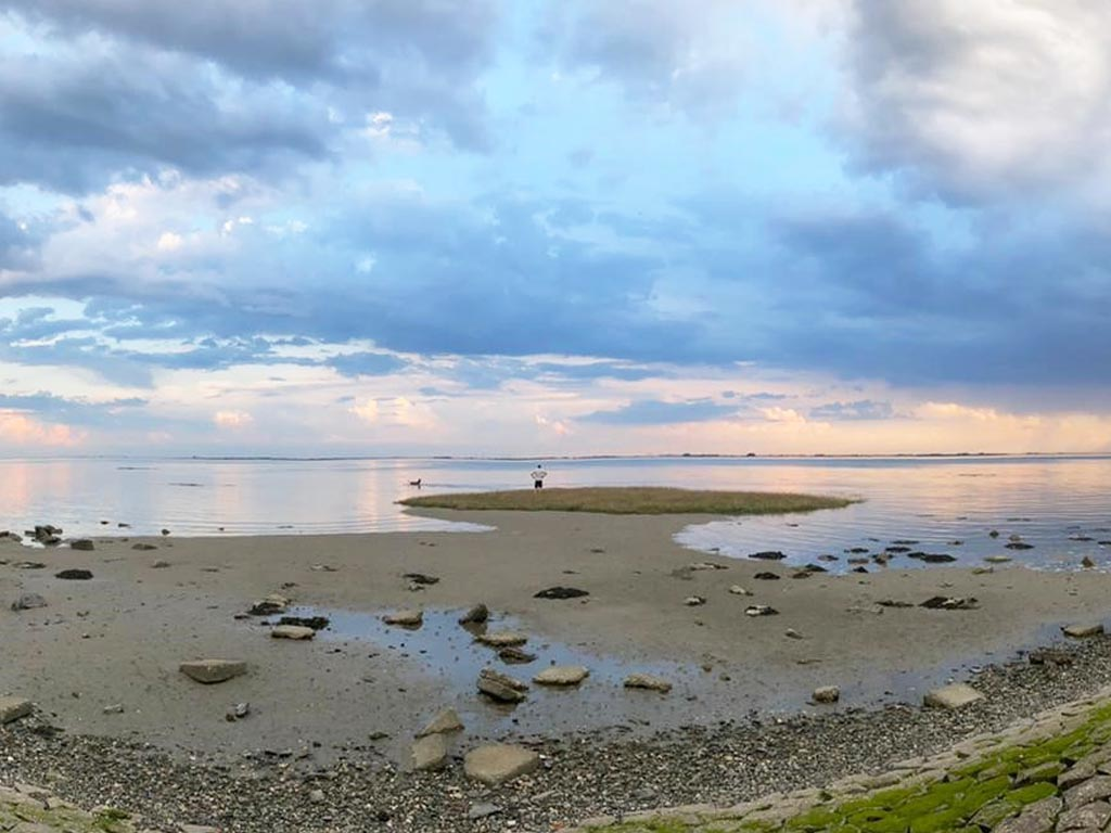 Zeeuwse Zichtlijnen: een goed gesprek over ecologie in Zeeland